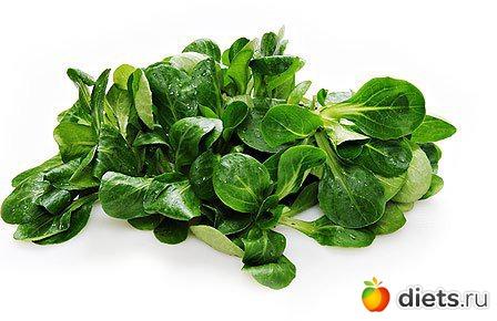 Разновидности салатов фото