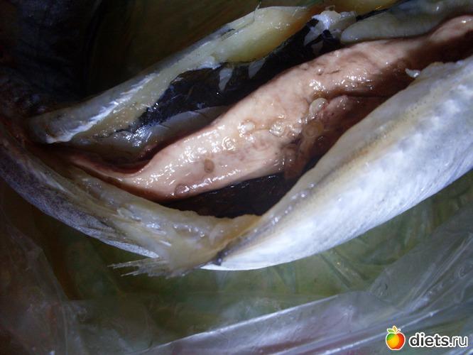 паразиты рыб в пруду и их лечение