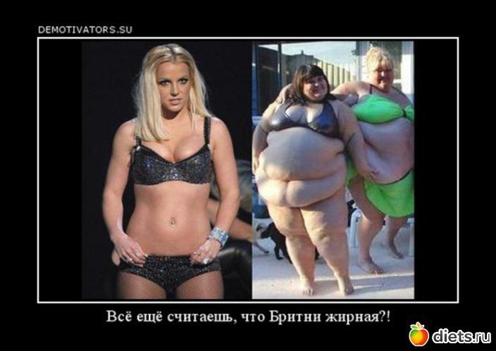 как похудеть за полгода на 15 кг